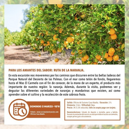 Programa oficial de visitas guiadas: ruta de la naranja
