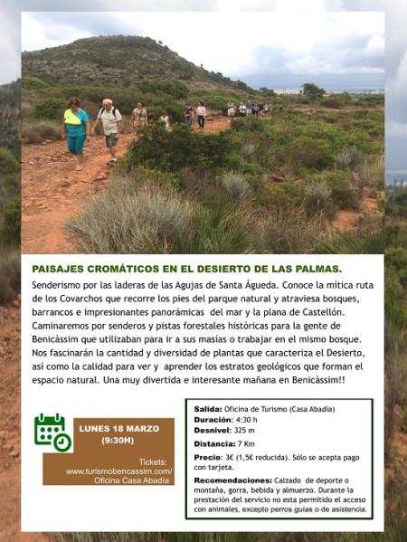 Programa oficial de visitas guiadas: paisajes cromáticos de Benicàssim