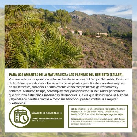Programa oficial de visitas guiadas. Para los amantes de la naturaleza: las plantas del Desierto de las Palmas.