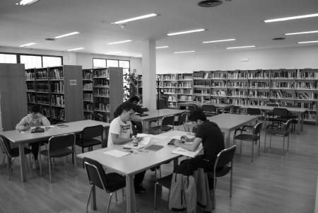 Biblioteca Pública Municipal Francisco Pérez Bayer